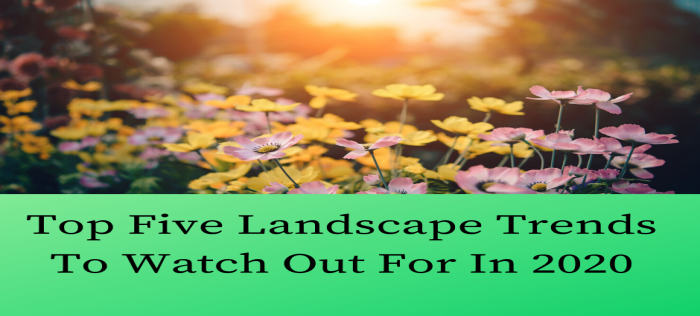 Top Five Landscape Trends To Watch Out For In 2020